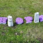 Relay for Life 2020, The year we went virtual 83