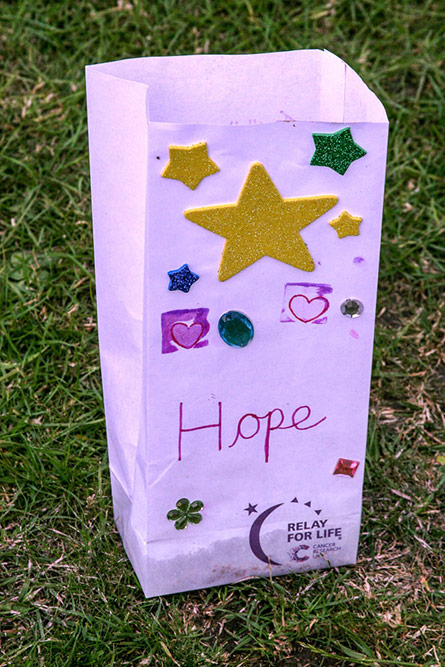 Relay for Life 2014 Gallery 119